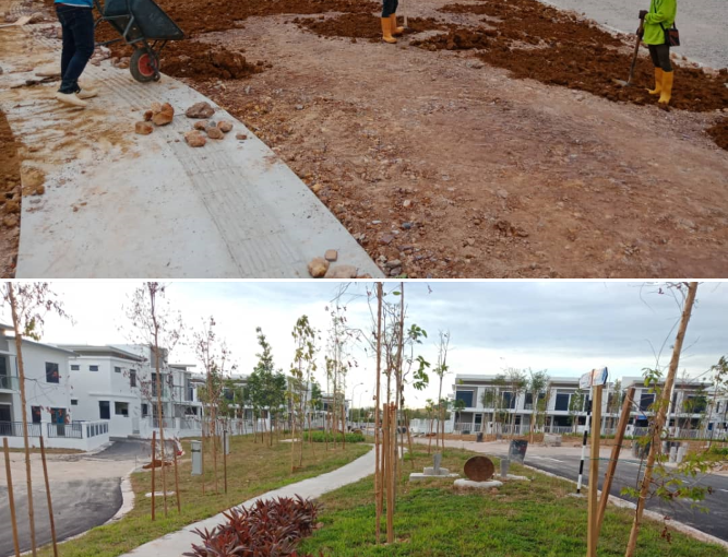 Before & After developer housing project